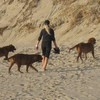 photo chien et chiot dogue de bordeaux : 2010_ete_balade_mer_05