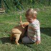 photo chien et chiot dogue de bordeaux : 20130701_chiens_enfants_06