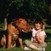 photo chien et chiot dogue de bordeaux : aout2004